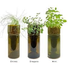 indoor hydroponic herb garden the herb garden indoor hydroponic herb garden diy