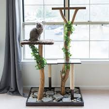 Chic cat furniture Human Sized Chic Diys Every Cat Owner Should Check Out Pinterest Chic Diys Every Cat Owner Should Check Out Amazing Diy Diy Cat
