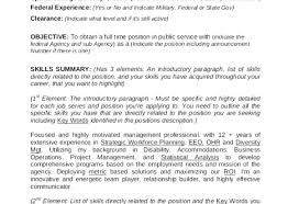 Full Size of Resume:federal Resume Service Suitable Best Federal Resume  Writing Service Reviews Bright ...