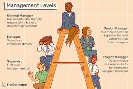 Tech Mahindra Designation Hierarchy Learn About Management Levels And Job Titles