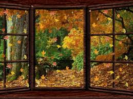 Image result for autumn falling leaves pictures