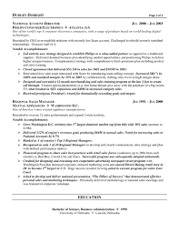 Channel Sales Executve Resume Example