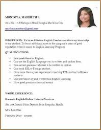 Curriculum Vitae Format New Curriculum Vitae Sample Job Application 48 My College Scout