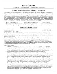 Business analyst resume examples is one of the best idea for you to make a  good resume 19