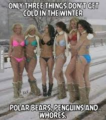 Only three things dont get cold in the winter - girl meme | Funny ... via Relatably.com