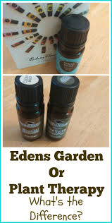 should you choose edens garden or plant therapy my first hand review of these two brands both of which i own