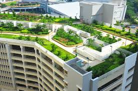 mitigate urban heat island effect