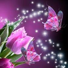 Animated Butterfly Wallpapers on ...