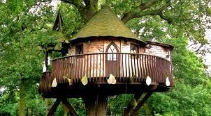 Treehouse Treehouse Theme O Nongzico