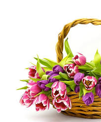 send flowers gifts