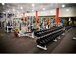 top 10 gyms in herndon