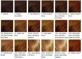Auburn Brown Hair Color Chart Brown Hair Colors Honey