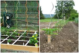 Climbing Plant Support For Tomato Spiral  Buy Climbing Plant Climbing Plant Support