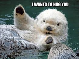 hugging otter memes | quickmeme via Relatably.com