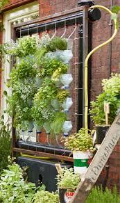 luxury vertical herb garden diy insteading wall indoor pallet nz idea kit master singapore