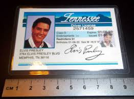 amp; Suggestions - Long Related Tail License Driver Presley Keywords Elvis