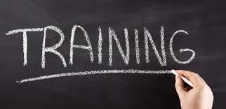 Training Strategy Developing An Organizational Training Strategy