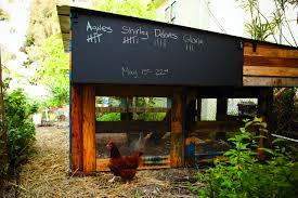 Stylish Chicken Coop Designs 8 Super Stylish Chicken Coops Homestead Pallet Coop