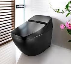 awesome most comfortable toilet seat pictures  best image d home