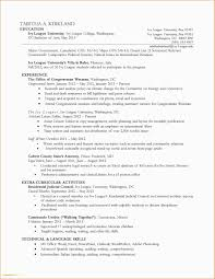 Sample Resume For Legal Executive New Executive Resume Templates