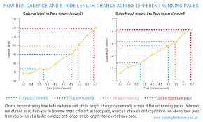 Stride Length Chart Running Cadence And Stride Length How Important Is Run Cadence