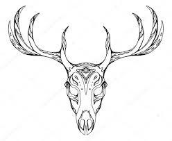 олень череп с рогами векторное изображение Veleri 117202622