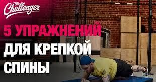Упражнения для спины: 5 эффективных упражнений   Fitness ...