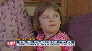 charlotte's web cannabis