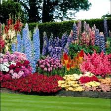 Related wallpaper for Beautiful Front Yard Flower Gardens