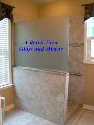 Privacy Glass  HouzzShower Privacy