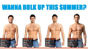 looking to bulk up this summer don t