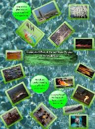 causes and effects of air and water pollution text images music causes and effects of air and water pollution