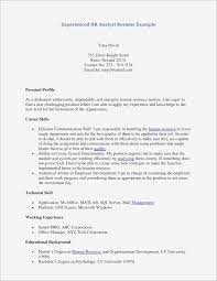 Examples Of High School Resumes Beautiful Good Resume Examples For