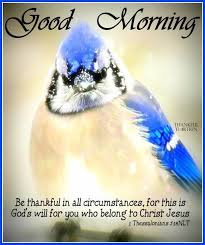 Religious Good Morning Quotes Best Of Religious Good Morning Quote About Being Thankful Pictures Photos