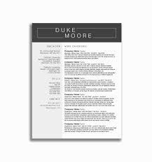 Google Drivee Template Best Free Cv Drive Resume Templates