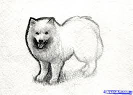 dogs drawings in pencil for kids. Simple For Dog Drawings In Pencil For Kids  Photo23 For Dogs Drawings In Pencil Kids