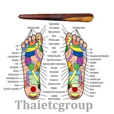 Foot Chart Us 1 9 Fly Eagle 1 X Reflexology Health Thai Foot Massage Wooden Stick Tool Free Shipping With Chart In Party Favors From Home Garden On