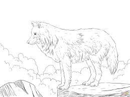 Splendirintable Wolf Coloringageshoto Ideas Arctic Snowage Free For