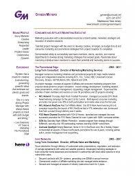 Resume Example Internet Marketing Consultant Cover Letter Resume