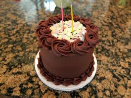 Padicakes Mini Chocolate Birthday Cake Padicakes Cake Recipes