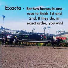 Exacta Strategies Thinking Outside The Box A Game Of Skill