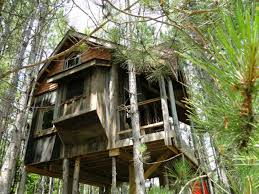 Lynne Knowlton's Treehouse is a Sanctuary Made from Reclaimed Materials in  Canada | Inhabitat - Green Design, Innovation, Architecture, Green Building