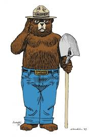Image result for smokey bear
