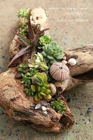 Small Picture 444 best Greenery images on Pinterest Succulents Gardening and