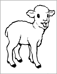 Small Picture Free Printable Sheep Coloring Pages For Kids