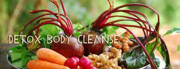 תוצאת תמונה עבור body cleansing