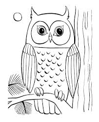 Cute Owl Printable Coloring Pages Free Printable Cute Owl G Pages