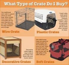 dog crates size chart crate size for your dog measuring charts pinterest crates dog