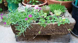 hypertufa planters look like they re made of stone or rock but they re lightweight containers made from cement mixed with other materials like vermiculite