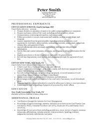 Court Officer Resume Simple Court Clerk Resume Example Pinterest